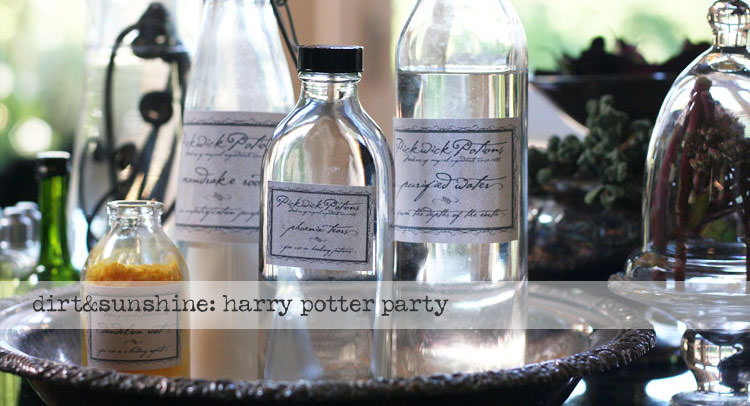 party ideas harry potter